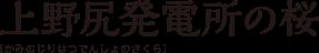 上野尻発電所の桜