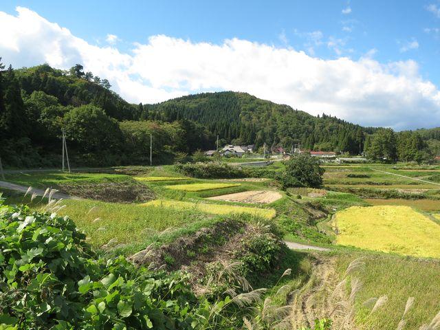 shingoufuji0386